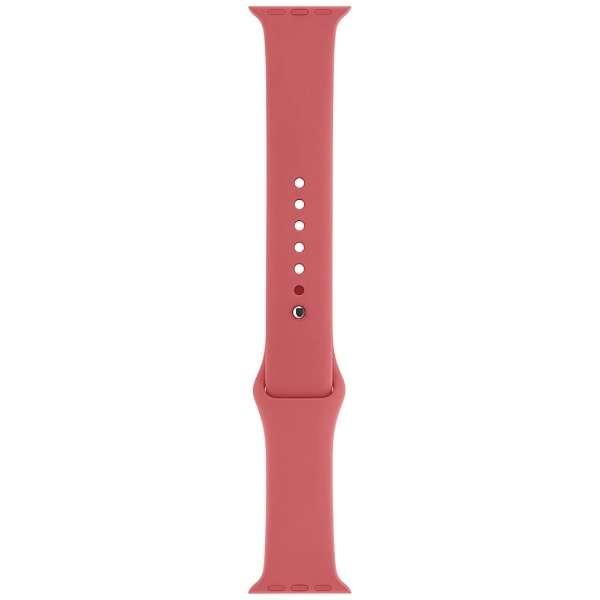 Apple Watch 42mm ケース用 カメリアスポーツバンド MPUW2FE/A