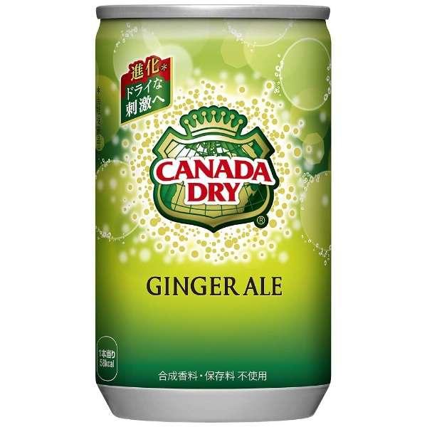 カナダドライ ジンジャーエール 160ml缶(30本)【炭酸】
