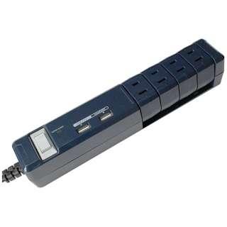 USB充電ポート付き電源タップ (2ピン式・4個口・USB2ポート・1.8m) PTBK604NY 【ビックカメラグループオリジナル】