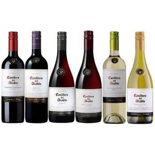 高コスパチリワイン!! カッシェロ・デル・ディアブロ 飲み比べセット (750ml/6本)【ワインセット】