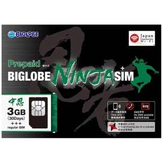 BIGLOBE NINJA SIM标准SIM 3GB