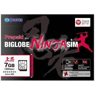 BIGLOBE NINJA SIM microSIM 7GB