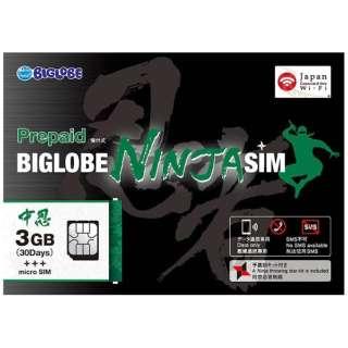 BIGLOBE NINJA SIM microSIM 3GB