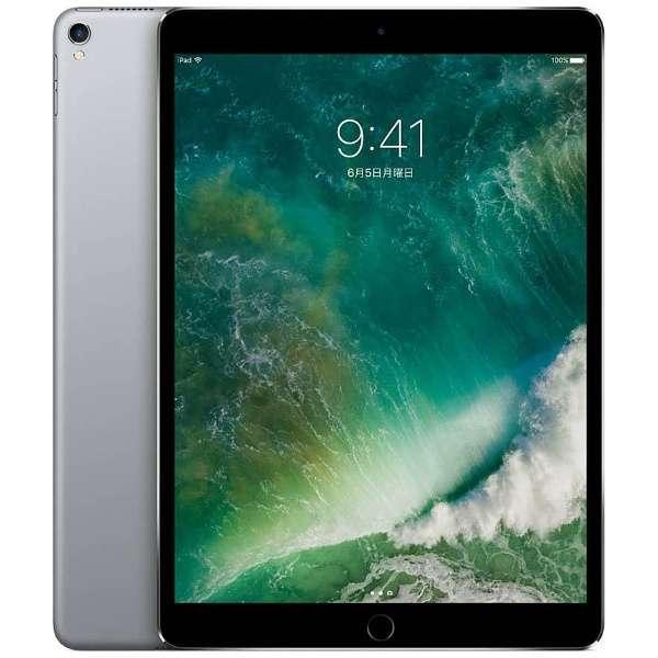 iPad Pro 10.5インチ Retinaディスプレイ Wi-Fiモデル MPDY2J/A (256GB・スペースグレイ)