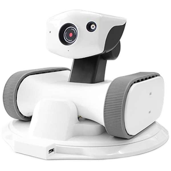 RILEY-17 ホームセキュリティロボット appbot RILEY(アボットライリー) [暗視対応 /無線]