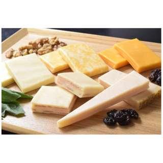 [ネット限定] ナチュラルチーズ5種セット (合計500g) ※冷凍
