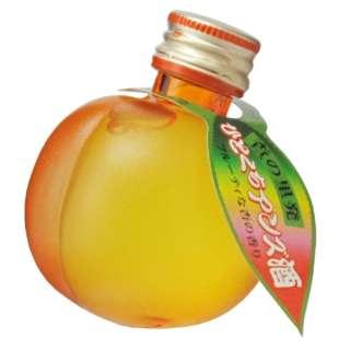 ひとくちアンズ酒 49ml【リキュール】