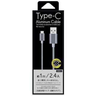[Type-C ]ケーブル 充電・転送 1m シルバー CK-CA01SV [1.0m]