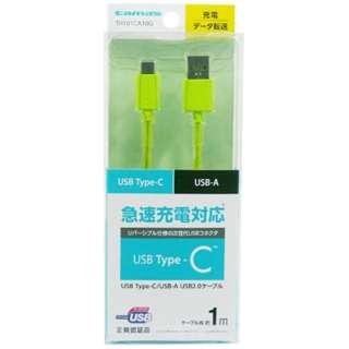 [Type-C]ケーブル 充電・転送 1m グリーン TH101CA10G [1.0m]