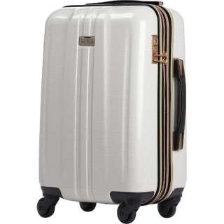 TSAロック搭載スーツケース(32L)ANCHOR+ 6701 6701-48-CB  ホワイトカーボン