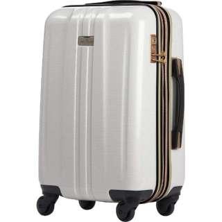 TSAロック搭載スーツケース(44L) ANCHOR+ 6701 6701-54-WHCB   ホワイトカーボン