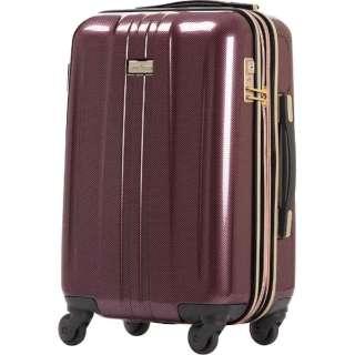 TSAロック搭載スーツケース(32L)ANCHOR+ 6701 6701-48-WRCB  ワインレッドカーボン