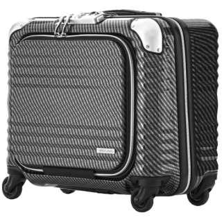 TSAロック搭載スーツケース ビジネスハード4輪キャリー 6206-44-R-BKSL