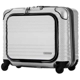 TSAロック搭載スーツケース ビジネスハード4輪キャリー 6206-44-R-WHSL