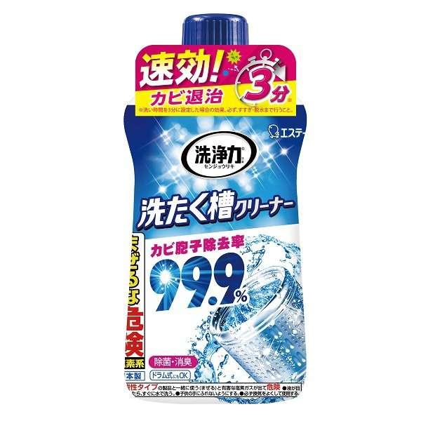 洗浄力 洗たく槽クリーナー 550g 〔洗濯槽クリーナー〕