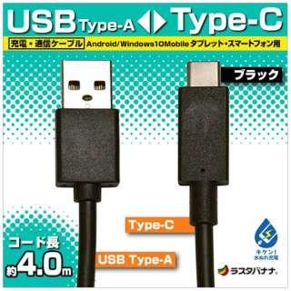 [Type-C]ケーブル 充電・転送 4m ブラック RBHE278 [4.0m]