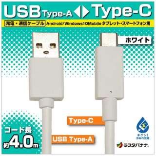 [Type-C]ケーブル 充電・転送 4m ホワイト RBHE279 [4.0m]