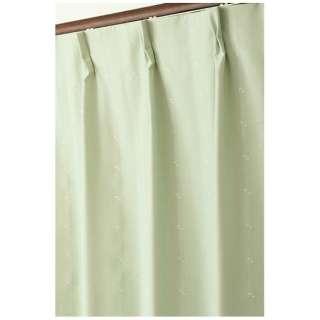 2枚組 ドレープカーテン ジェシー(100×135cm/ライトグリーン)