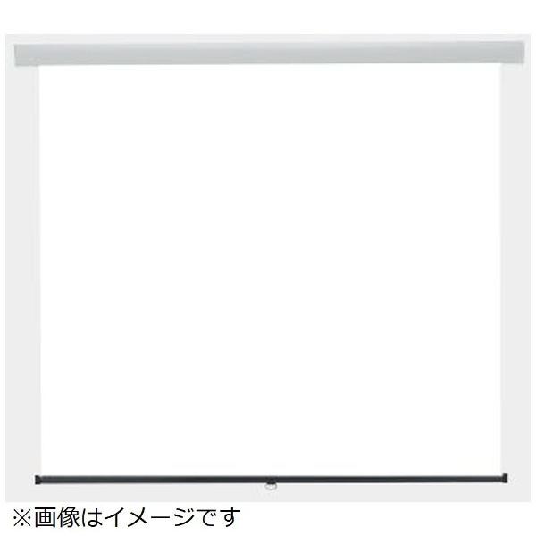 KIKUCHI SS-100AFPG/W プロジェクター関連