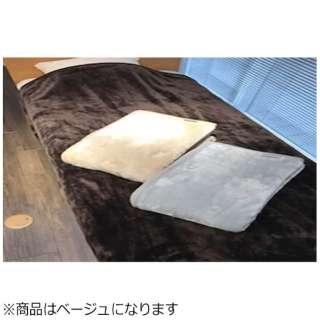 ニューマイヤー毛布 グレイスカラー(シングルサイズ/140×200cm/ベージュ)