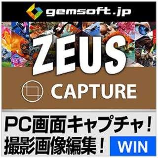 ZEUS CAPTURE 画面撮影ソフト~欲しい画面を素早く切り取り保存【ダウンロード版】