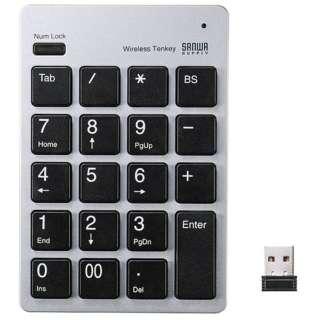 NT-WL20 テンキー シルバー [USB /ワイヤレス]