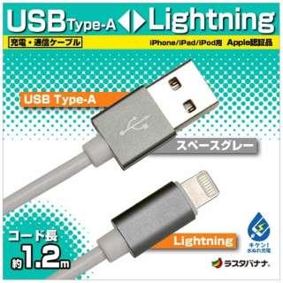 [ライトニング] ケーブル 充電・転送 2.4A (1.2m・スペースグレー)MFi認証 RBMFI075 [1.2m]