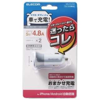 シガーチャージャー/2USBポート(自動識別)/4.8A/グレー MPA-CCU10GY