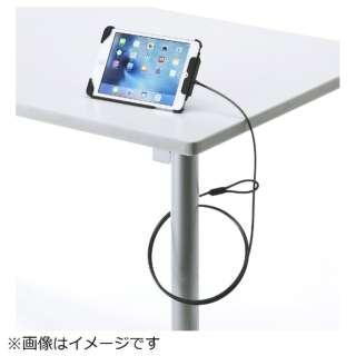 iPad mini 4/mini 3/mini 2/mini対応セキュリティ(ブラック) SL-73IPMBK