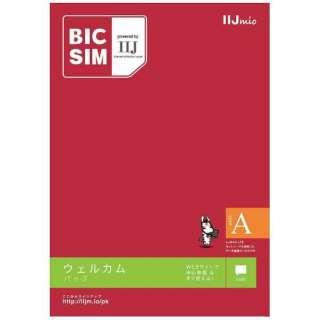 【無料WiFi付】マルチSIM 「BIC SIMタイプA」 データ通信専用・SMS対応 au対応SIMカード IMB200 マルチ