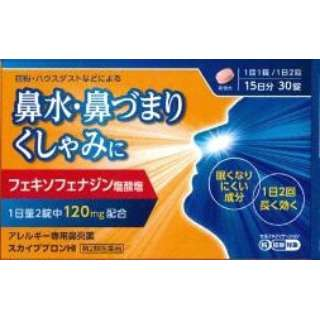 【第2類医薬品】スカイブブロンHI 30錠〔鼻炎薬〕