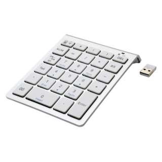 TEN24G01 テンキー シルバー [USB /ワイヤレス]