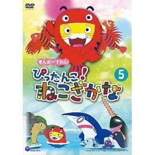 きんだーてれび ぴったんこ!ねこざかな 5 【DVD】