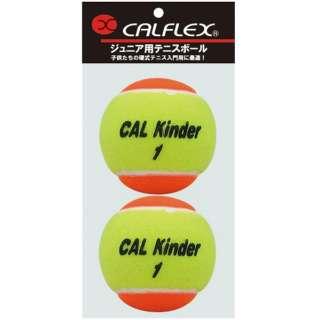 ジュニア用硬式テニスボール STAGE2 2球入 LB-480 イエロー×パープル