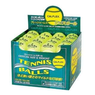 一般用硬式テニスボール 48球入 LB-4048YL イエロー