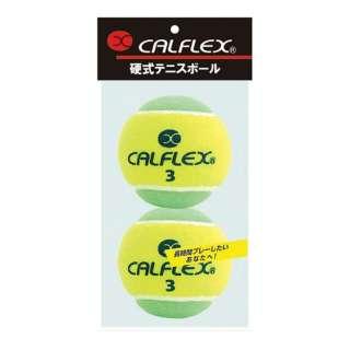 一般用硬式テニスボール 2球入 LB-450YLGR イエロー×グリーン