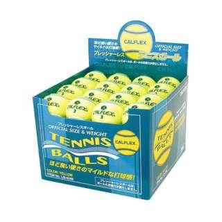 一般用硬式テニスボール 48球入 LB-4048YLGR イエロー×グリーン