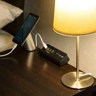 クランプ式USB充電器(TypeC1ポート+USB3ポート・ブラック) ACA-IP51BK