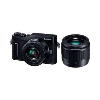 LUMIX GF10【ダブルレンズキット】DC-GF10W-K(ブラック/ミラーレス一眼カメラ)