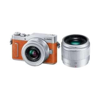 LUMIX GF10【ダブルレンズキット】DC-GF10W-D(オレンジ/ミラーレス一眼カメラ)
