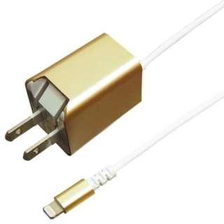 AC充電器 Lightning 1.5m ゴールド BACLAN24GD