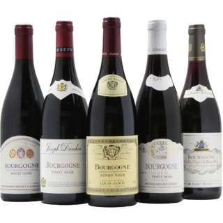 第2弾 有名生産者のブルゴーニュ赤ワイン飲み比べセット (750ml/5本)【ワインセット】