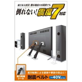 供电视使用的防震皮带[进入供~40V使用的/强力粘着封条类型/2条]TS-001N2