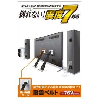供电视使用的防震皮带[进入供~75V使用的/强力粘着封条类型/2条]TS-002N2