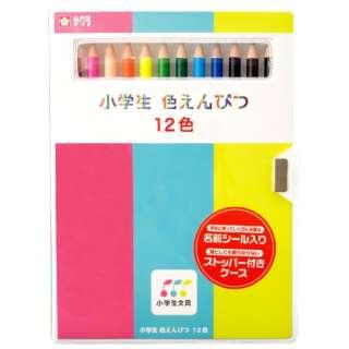 サクラ小学生色鉛筆 12色