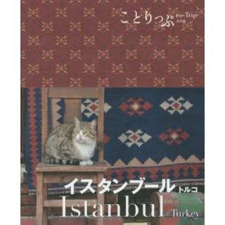イスタンブール トルコ 2版