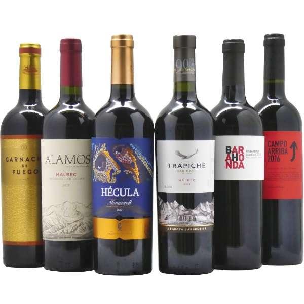 濃厚赤ワイン好き必飲!! ウマ安コスパ最高ワインセット (750ml/6本)【ワインセット】