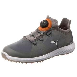 c72e413ca8f9ee Men s Golf Shoes IGNITE PWRADAPT DISC(26.0cm Quiet Shade X Quiet Shade)  190582