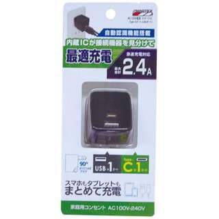 [USB給電] Type-Cポート+USBポート 2.4A 2ポート ブラック AC002BK AC002BK ブラック