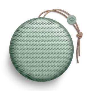 BEOPLAY-A1ALOE ブルートゥース スピーカー アロエ [Bluetooth対応]